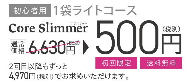 1袋ライトコース500円
